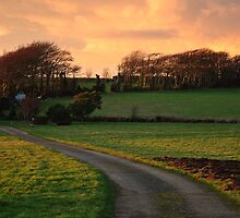 English Country Lane at Sunset by JengaPix