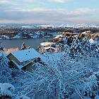 Vinter view from my window by Annbjørg  Næss