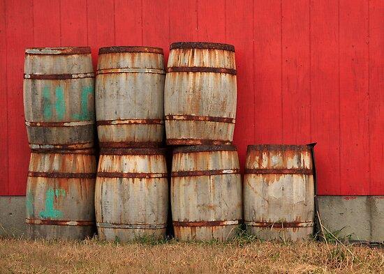 Barrels by Debbie  Roberts