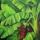 Banana Tree Flower by Dominica Alcantara