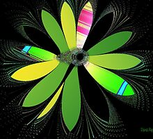 Fractal Flower by Dana Roper