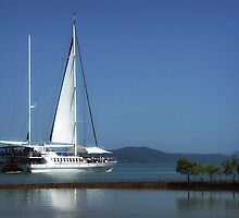 Reef Cruiser - Port Douglas by Hans Kawitzki