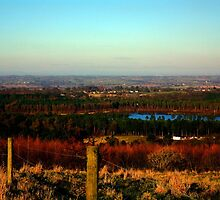 Blakemere Moss from above, Delamere by kkimi88