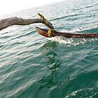 Outrigger on a Goan fishing boat 2 by Rachel  Devenish Ford