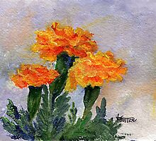 Three Sisters  Marigolds by jimmie