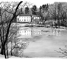 Coles Pond - West Boxford, Massachusetts by Susana Weber