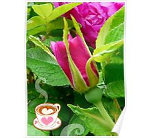 Valentine Rose Bud and a Cup of Hot Chocolate Poster