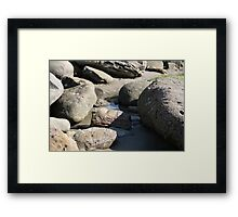 Fossil hunting at Charmouth  Framed Print