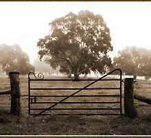 ~ The Gate ~ by LeeoPhotography