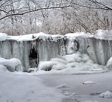 Brouilletts Creek Waterfall - Frozen #1 by Jeff VanDyke