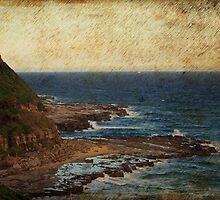 The Shelf - Susan Gilmour Beach by reflector