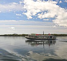 Tea Gardens Ferry - NSW Australia by Bev Woodman