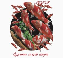 Cyprinus carpio carpio ; Japanese Koi. All profits to the RSPCA by Alex Gardiner