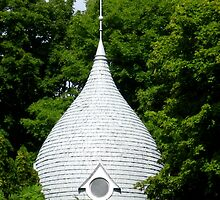 SUMMER TURRET .,NORTHERN MICHIGAN by panik