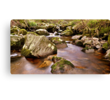 Woodland Stream at Glencree co, Wicklow. #2 Canvas Print