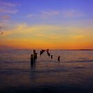 """Bridport Jetty at Sunset"" by Husky"