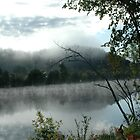 Mist on the Gatineau by anicolle