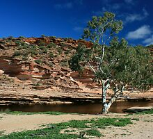 Murchison River by Miriam Shilling
