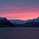 Winter glow, Nordland, Norway by David Burren