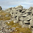 Burren Stone wall by John Quinn