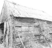 Prousts Barn by Pamela Jayne Smith
