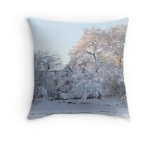 Mill Houses 2/13/2010 Throw Pillow