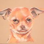 Karma the Chihuahua by Tracy Manning