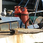 Seagull on Fishing Boat in Troon Harbour by AleFest