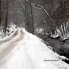 gravel road in winter of 2010. by click67