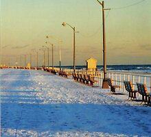 Snowy Boardwalk by Jonathan Spector