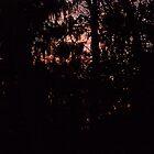 Pink Sky by porksofpig