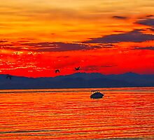 """Another Day In Paradise- Qualicum Bay, Vancouver Island"" by Bruce Jones"