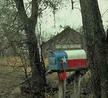 Texas Mailbox by Susan Russell