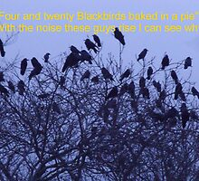 Four and Twenty Blackbirds by Gerry  Temple