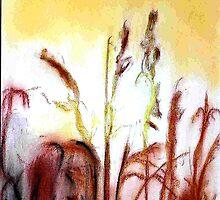 sun in Rice by David M Scott