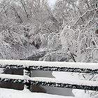 Winter Bridge View by RWaters