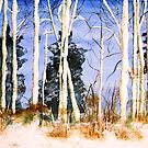 Birches in Winter by AndreaFettweis