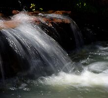 Calm Rhythm of the Flow by Vicki Pelham