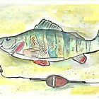 Yellow Perch by Matt  Gaudian