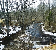 Swan Pond Brook by MaryinMaine