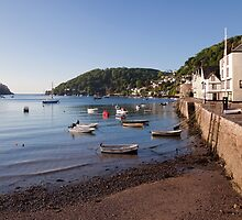 Bayard's Cove and the River Dart by Kerry Dunstone