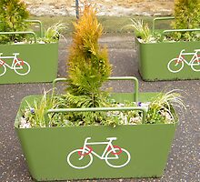 3 Green Planters by amylw1