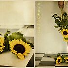 * Sunflowers * by tonilouise