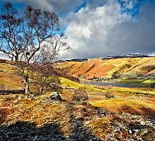 Watendlath View - Cumbria by David Lewins