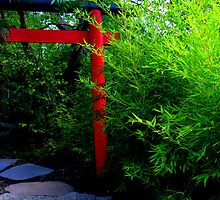 Auburn Japanese gardens by Kate Jones