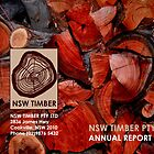 NSW TIMBER Annual Report Cover by emilykperkin