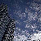 a tall, floury sky by Ryan Bird