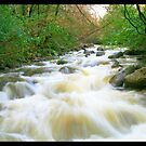 Comeragh Rapids by flufduffy