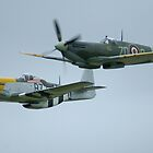 Mustang and Spitfire by Yvonne Falk Ponsford