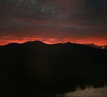 Morning Break - Great Dividing Range, North Queensland by DanielRyan